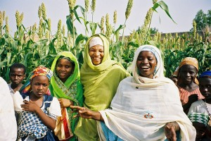USAID is helping farmers' organizations, like this group in Kano, Nigeria, to plant and harvest higher-yielding crops. These women have boosted their incomes by producing more cowpeas than in previous years. Photo Credit:Ann Fleuret, USAID/Nigeria