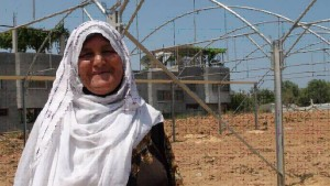 Mariam Mohammad Abu Jarad during greenhouse installation  Photo Credit: Jamila Al Za'anin, Save the Children Gaza.