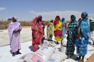 Food aid being distributed in Darfur, Sudan, earlier this year.  Photo:  Rebecca Dobbins/USAID