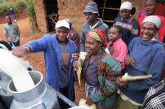 Kenya dairy farmers participating in USAID program