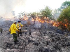 Working to prevent wildfire in Paraguay. Photo Credit: USAID