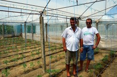 Two members of the Hortigor Farmers Association who recently returned from Greece in Goriçan. Photo Credit: Clare Masson, USAID Albania.