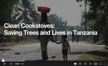 Clean Cookstoves: Saving Trees and Lives in Tanzania
