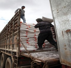 Workers load newly-milled flour onto a truck in Syria.  Photo credit: USAID Partner