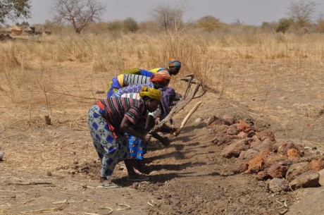 Women in Kofogou repairing a dike. Photo credit: USAID