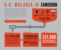 INFOGRAPHIC: K.O. Malaria In Cameroon. Photo credit: Malaria No More