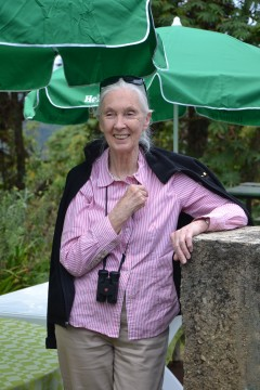 Dr. Jane Goodall in Nyungwe. Photo Credit: USAID