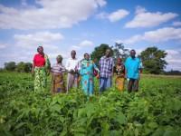 Farmers in the Farmer-to-Farmer program