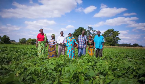 Farmers in the Farmer-to-Farmer program