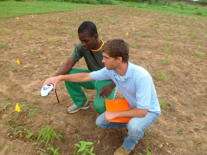 Muhammad Sarr and Patrick Trail use an electronic device to take soil samples around small millet plants and record the data. Their results will help determine how to better grow millet. But the scope of the research goes beyond this too: It's helping improve the skills of students in agronomy. /USAID
