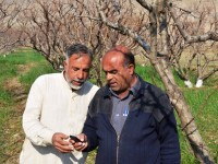 A 'connected' farmer is sharing information with a 'non-connected' farmer in his community. / USAID/Pakistan