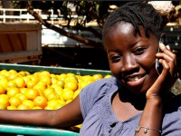 The Feed the Future Project is linking markets in Mozambique with mobile phones