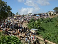 Seventeen kilometers of improved roads in the Haitian mountain community of Fond-Baptiste now provide easy access to this local Monday market and larger markets on the coast. / Steve Goertz
