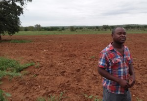 Carlos Sigue, an agribusiness owner in Mozambique, with his 15-hectare plot where he grows several vegetables, including potatoes, cabbage, and cucumbers. / Scott Haller, USAID