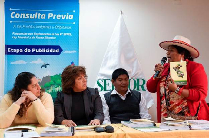 The director of the Peruvian Forest Service listens to the leader of the National Federation of Peasant, Artisan, Indigenous, Native and Salaried Women-Arequipa. / Francisco Cruz, Chemonics International