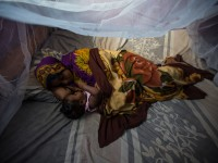 Habiba Suleiman, 29, a district malaria surveillance officer in Zanzibar, naps with her little girl Rahma under a mosquito net. She lives in Tanzania, where up to 80,000 people die from malaria each year. Hariba is working to change that. Read her story on USAID's storytelling hub. / Morgana Wingard, USAID