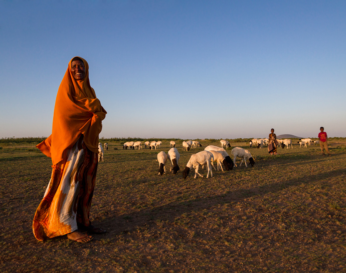 In Ethiopia, where drought and famine affect more people than any other type of disaster, USAID works to build the resilience of pastoral communities by providing emergency feed to sustain livestock, animal vaccinations to avert disease, and opportunities for farmers to diversify their income. / Kelly Lynch, Mercy Corps