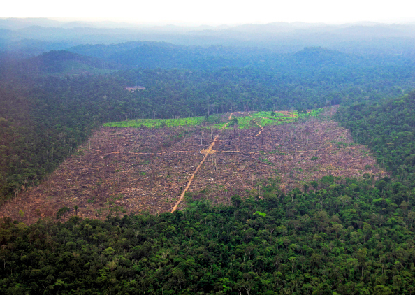 An aerial photograph shows a tract of the Amazon jungle recently cleared by loggers and farmers in Pará State. Imazon is primarily based out of Para and has worked to reduce illegal deforestation by 80 percent. / Stian Bergeland/Rainforest Foundation Norway/Reuters