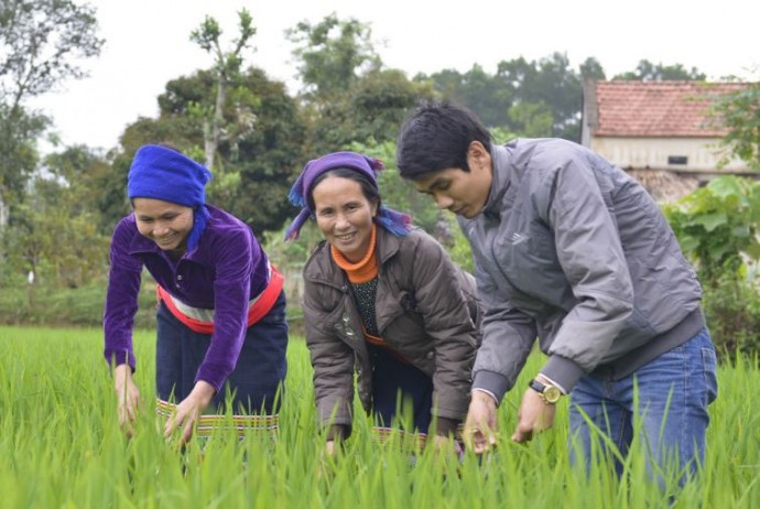 Rice farmers in one of Vietnam's poorest districts are using new climate-resilient rice strains and growing practices that are dramatically increasing yields while curbing greenhouse gas emissions and increasing resilience to climate impacts. Here, farmers learn to spot pests and diseases in their plants. / Phuong Nguyen