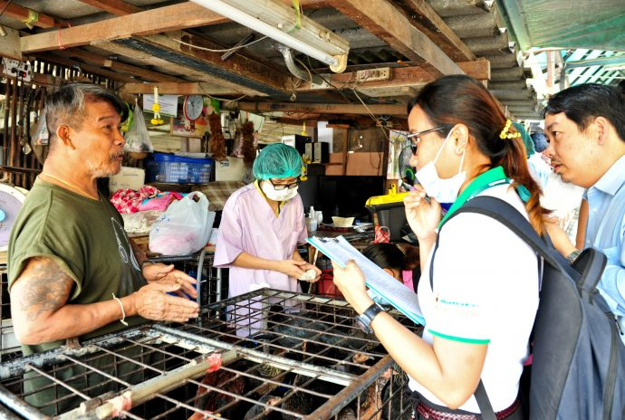 Avian influenza surveillance at Bangkok's Klongtoey Market. / Richard Nyberg, USAID