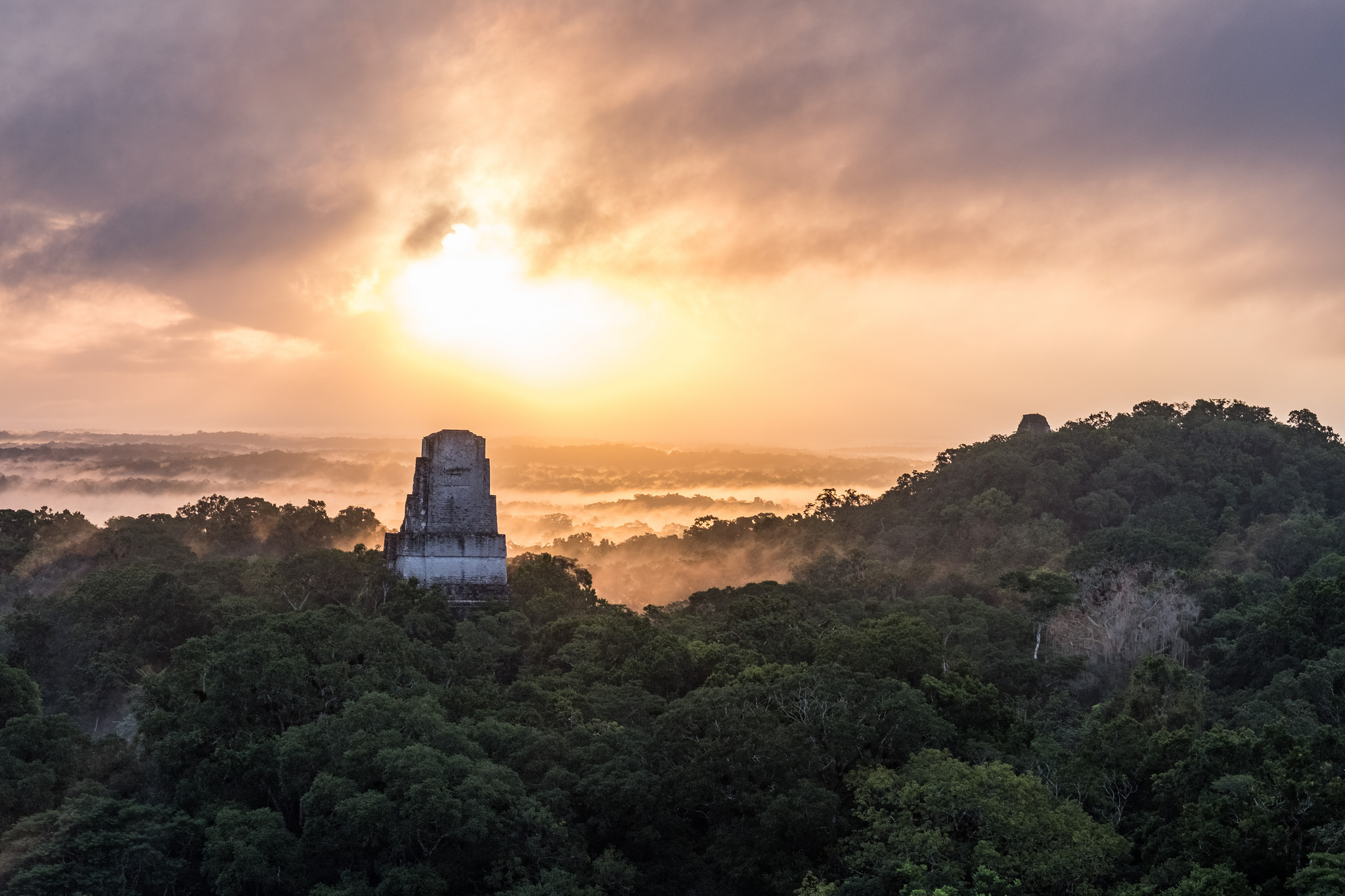 A panorama of a misty rainforest with a temple in the foreground